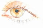 an eye seeing with bright illumination
